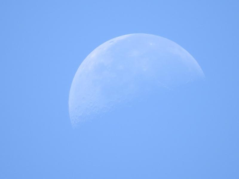 La Luna en cuarto menguante fotografiada a mediodía