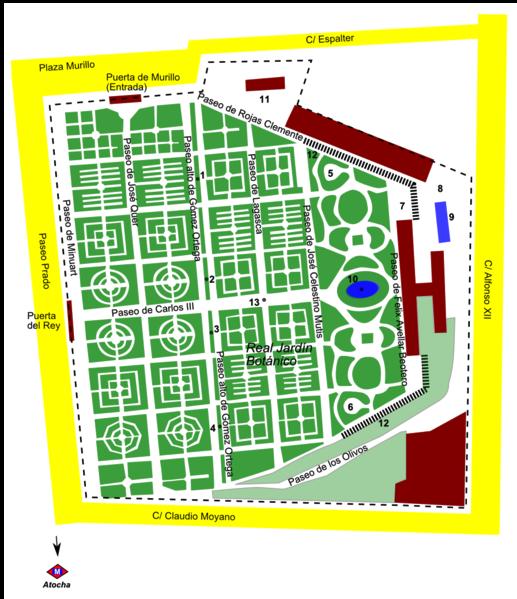 Visita virtual a la colecci n de bonsais del jard n for Biblioteca digital real jardin botanico
